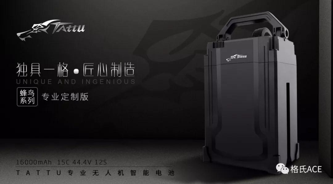 格氏峰鸟电池