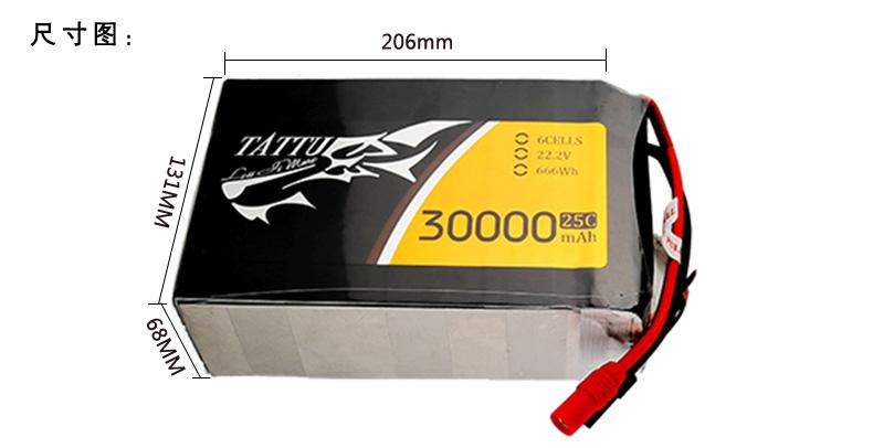 ta-25c-30000-6s1p_01-5